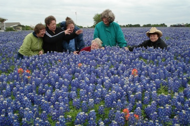 Bluebonnet Trail 012